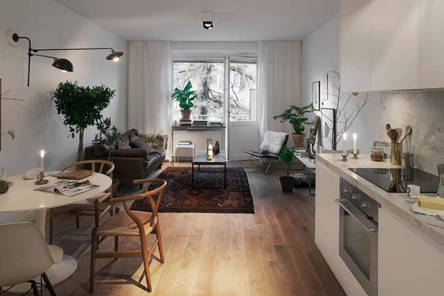1 bedroom apartment with Scandinavian style