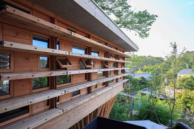 Timber dwelling elevated above the natural landscape