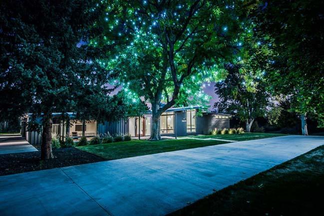 Mid-Century modern villa by Nest Architectural Design