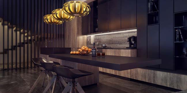 Modern kitchen with elegant dark tones