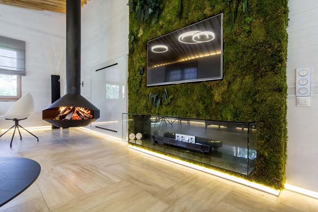 Living room interior with glass and green wall