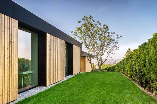 Pagoda House by IO Architects
