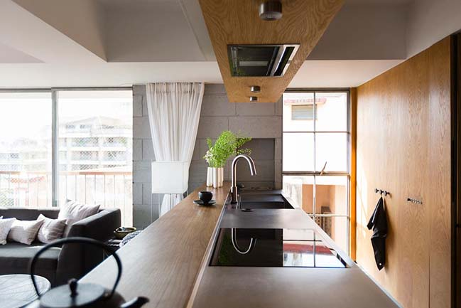 Apartment renovation by architecture brio
