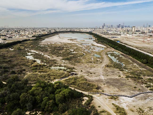 Wasit Natural Reserve by X Architects