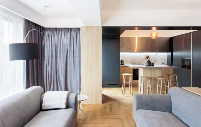Apartment M by Rosu Ciocodeica