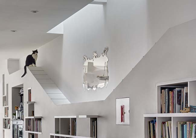 House for Booklovers and Cats by BFDO