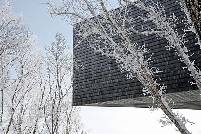 Stage of Forest in Ji Lin by META-Project