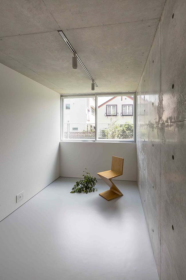Mimosa Pudica in Tokyo by Horibe Associates