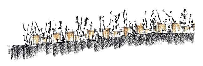 Entre Pinos by Taller Héctor Barroso
