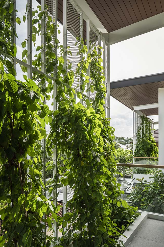 SIRI House in Bangkok by GLA Design Studio