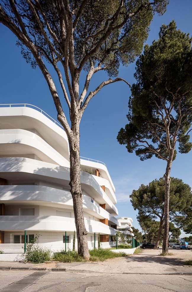 La Crique Project by PietriArchitectes