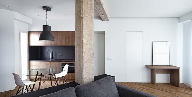 DS Apartment by Carlos Segarra Arquitectos
