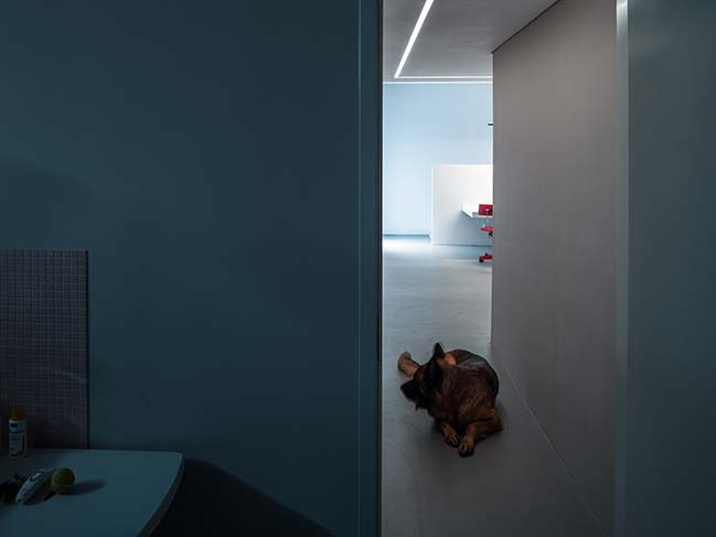 The Dog House in Beijing by Atelier About Architecture