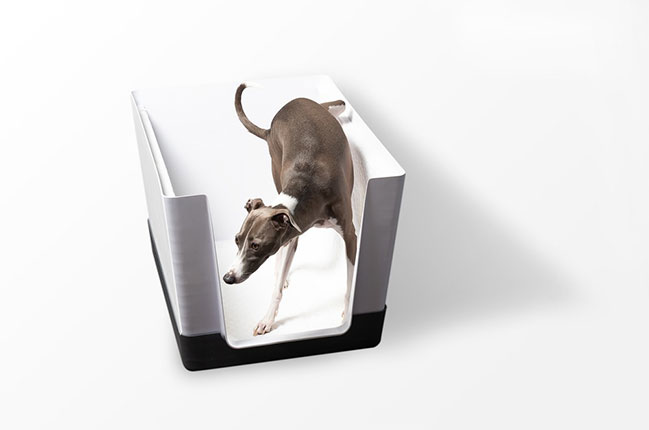 Doggy Bathroom: Anytime, On Their Own by Alain Courchesne