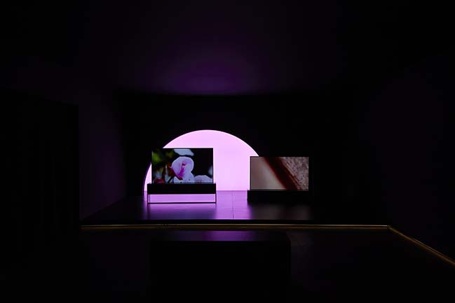 World's first rollable OLED TV by Foster + Partners features at Milan Design Week
