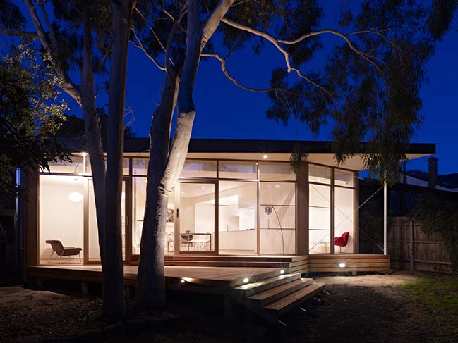 Tree House by Andrew Child Architecture