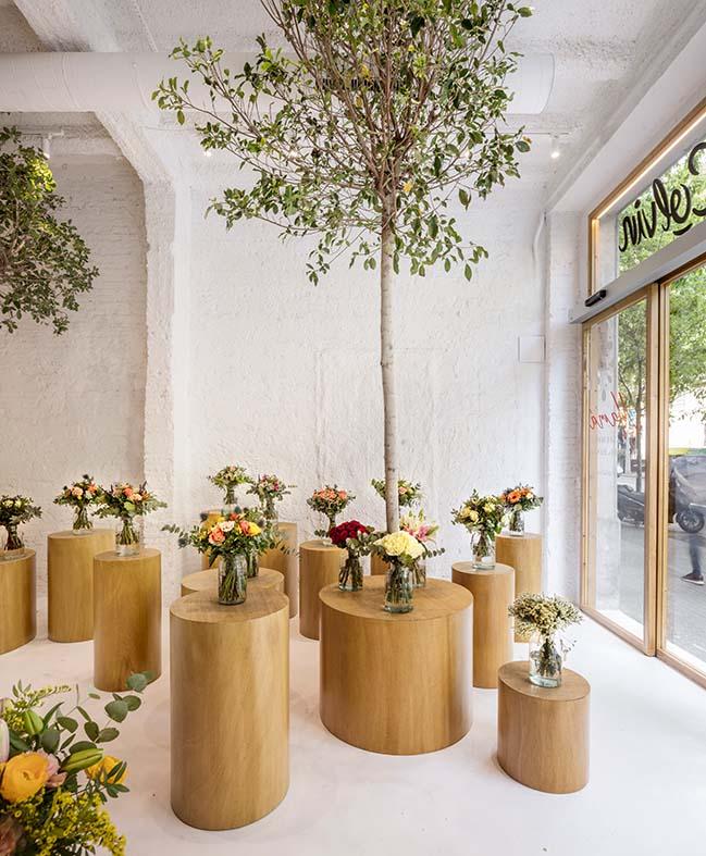 Colvin Florist by Román Izquierdo Bouldstridge