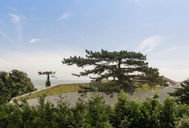 Ness Point by Tonkin Liu