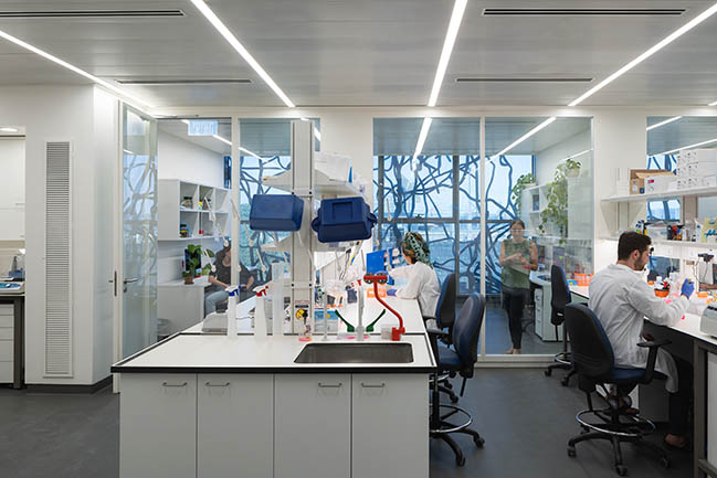 Edmond and Lily Safra Center for Brain Sciences by Foster + Partners